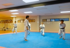 Black Belt Training - full throttle